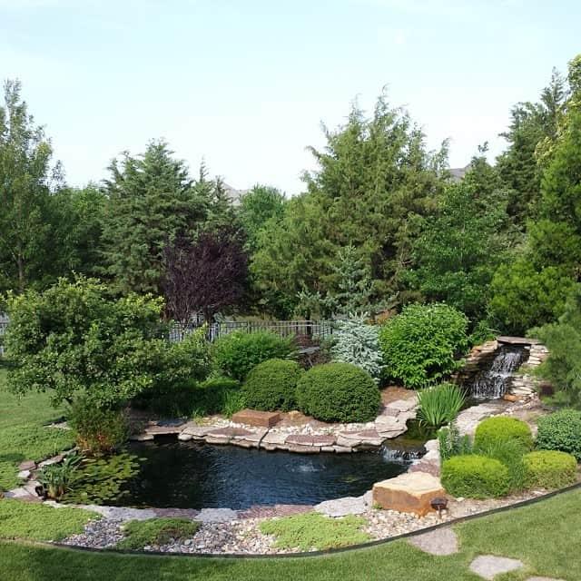 hongslandscape-hongslandscape-gardening-watergardening-koi-koipond_14233175947_o