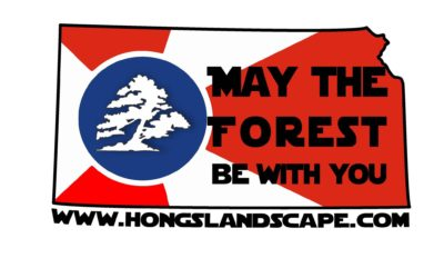 Hong's May the Forest Be With You T-Shirts