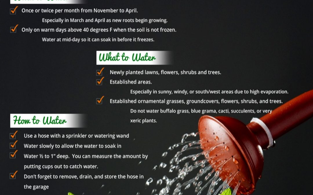 EXTREME Winter Drought Alert – Supplement Water Essential